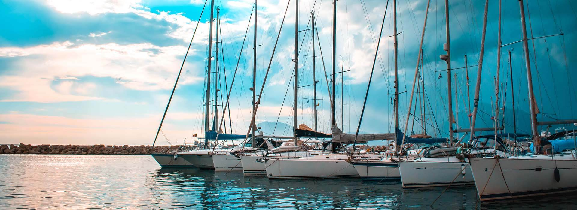 Series of sailboats docked alongside one another..